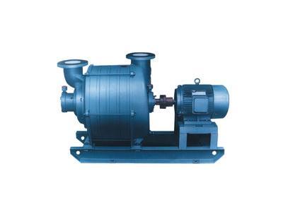 TLZ服装整烫抽湿真空泵(TLZ-15)