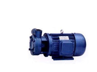 W型旋渦泵(W型)