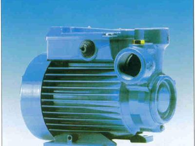 意大利进口旋涡水泵(CT-61E)