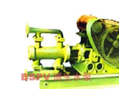 WBR型电动高温往复泵(1寸-2.5寸)