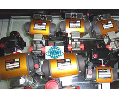 Flowserve泵(DN20)