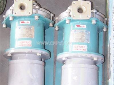 渦流泵(W)