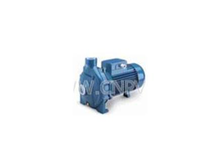 意大利佩德罗水泵(CP130)