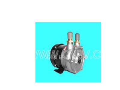 12V油泵(HW-12G)