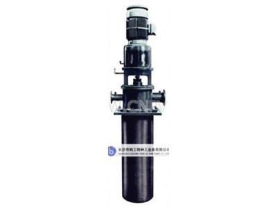 LDTN型立式多级筒袋式凝结水泵(80)