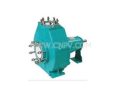 Wernert驱动泵(D343H-16C)