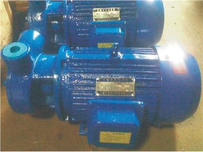 6分旋涡泵(6分W1.44-10)