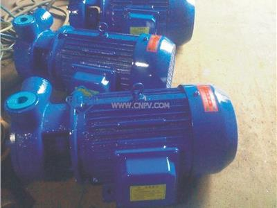 4分旋涡泵(4分W1.25-8)