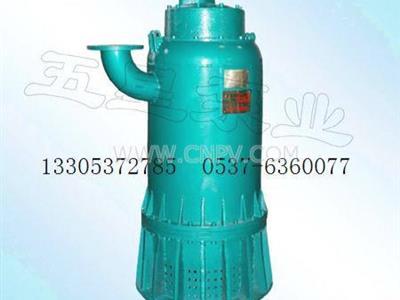 高端精品五星防爆排沙泵(BQS(BQW))