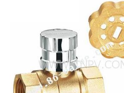 RG3200锻压黄铜磁性锁闭球阀(RG3200)