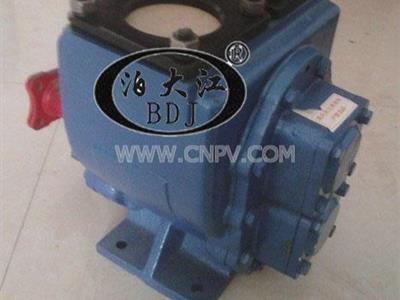 YHCB系列圆弧齿轮油泵(YHCB系列圆弧齿轮油泵)