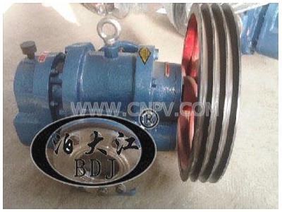 最優質LCX-50/0.6羅茨油泵(LCX-50/0.6)