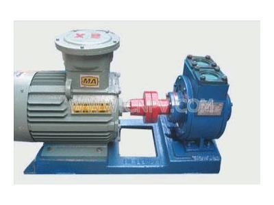 50YPB-8葉片式汽油滑片泵(50YPB-8)