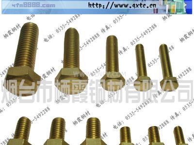 核電接地螺母,核電銅螺栓(多款供選)