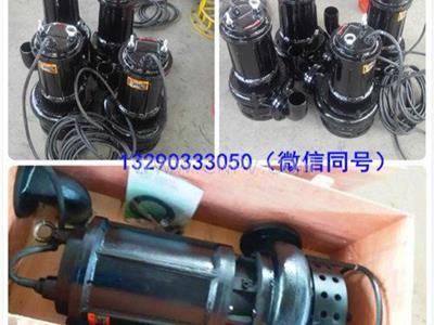 潜水污泥泵 ZSQ系列污泥泵 搅拌式(ZSQ)