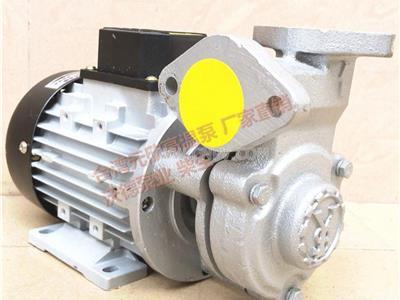 YS-15C元欣高温热油泵(YS-15C-120)