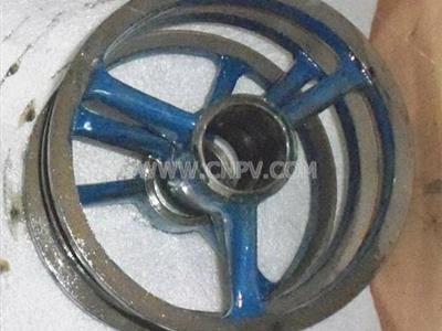 古尔兹长轴深井泵(rjc)