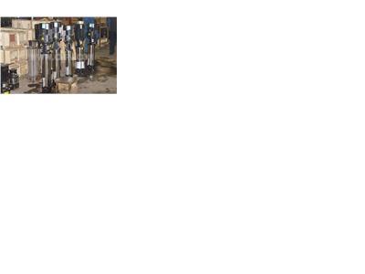 厂家供应优质勃亚特CDL/CDLF系列轻(QDL)