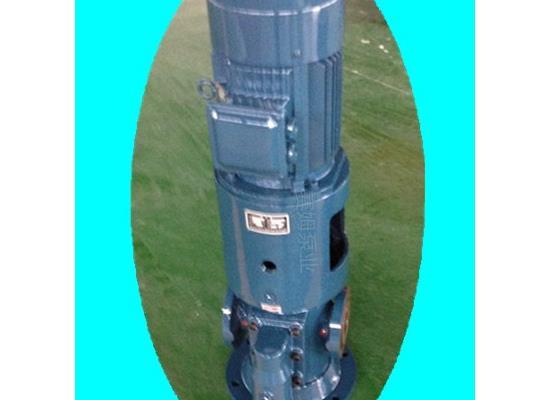 立式润滑油泵SNS210R46U12.1W21