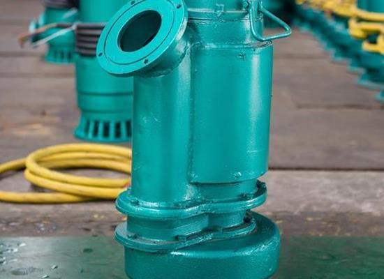 化工厂用WQB15-32-4防爆排污泵