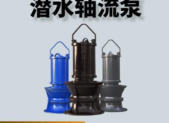 轴流泵结构,天津水泵轴流泵,质量好