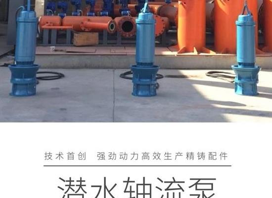 天津德能泵业公司 图_潜水轴流泵参数_潜水轴流泵