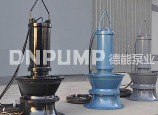 天津德能泵業 圖 、天津潛水軸流泵、潛水軸流泵