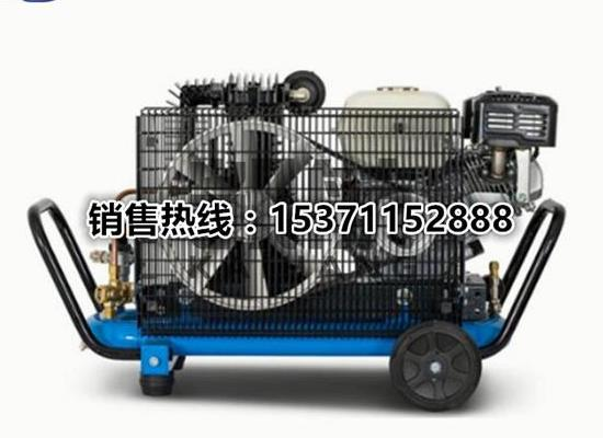 意大利进口低压压缩机EOLO330/SH 潜水空压机