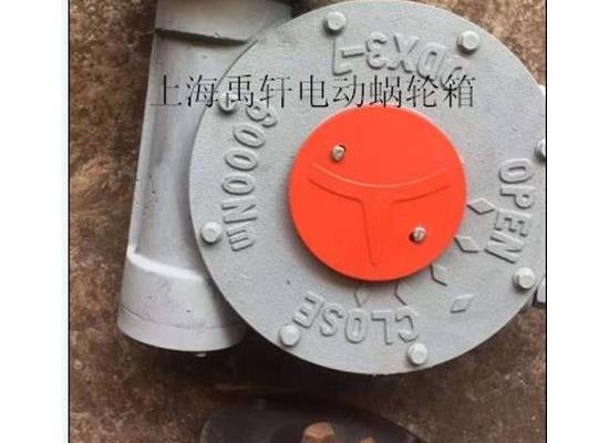 QDX3-D7/DN700蝶阀电动涡轮头 蜗轮电动球阀