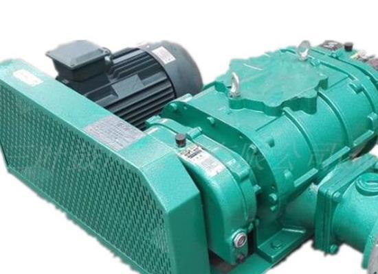 RTSR100羅茨真空泵