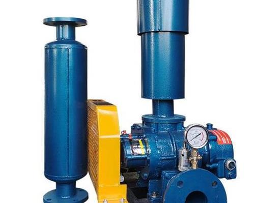 RTSR80羅茨真空泵