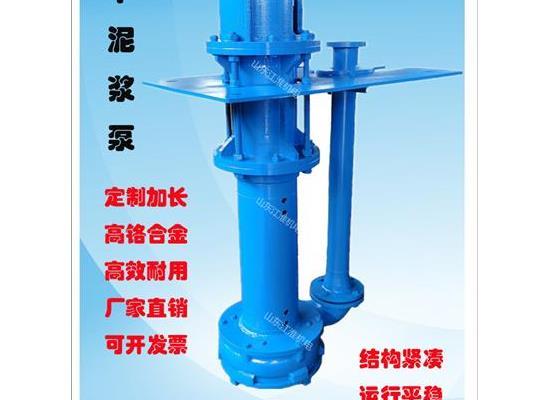 高浓度加长杆抽沙泵 液下杂质泵 多段连接方便使用