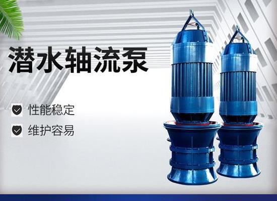QZB潛水軸流泵廠家直銷