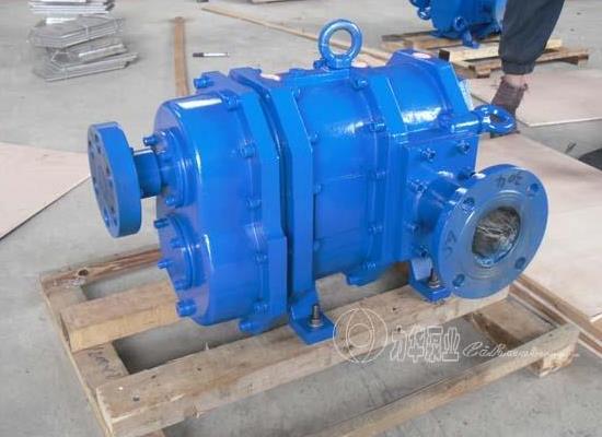 力华食品输送泵-高效率环保泵