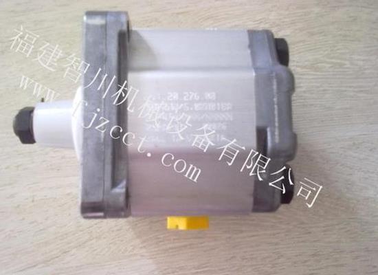 齒輪泵 111.20.276.00