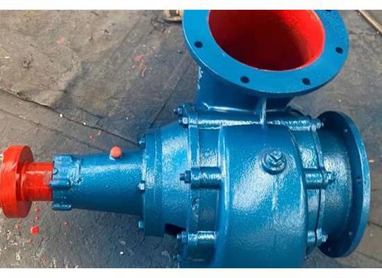 250HW-5S 立式混流泵
