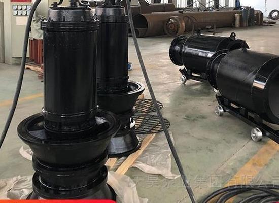 天昊泵业潜水轴流泵专业生产厂家