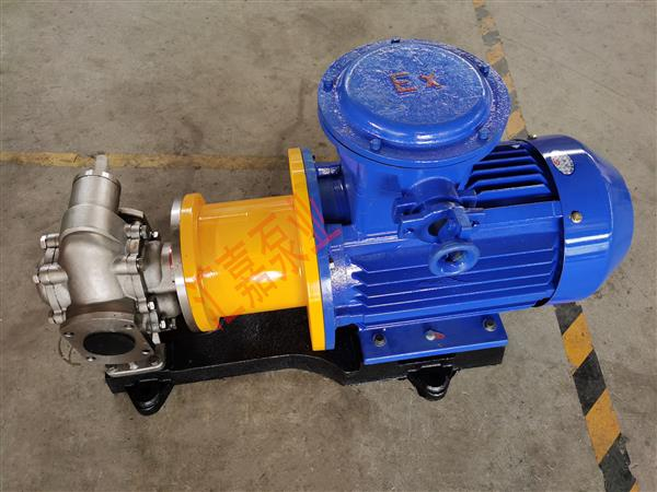 不锈钢磁力齿轮泵