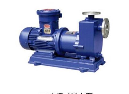 ZCQ50-40-145自吸磁力泵