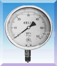 耐震双刻度压力表(YN-50 YN60 YN75 YN10)