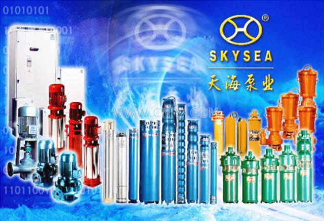 小型潜水电泵(QS80-22)