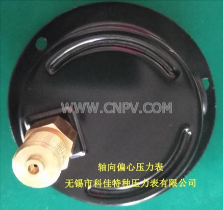 60表盘轴向带边偏心充油耐震压力表(YN-60ZP)