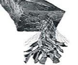 全镍基网增强石�墨盘根(: 76-022)