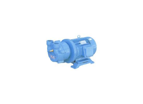 液環真空泵(ZY、2BE、SK、2SK、SZ、SZB系列)