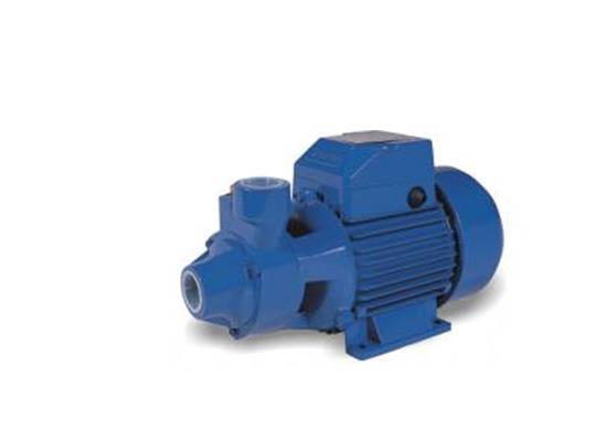 漩涡泵(QB60)
