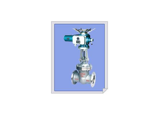 电动闸阀(16)
