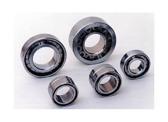 SL型圆柱滚子轴承(SL04-50**NR)