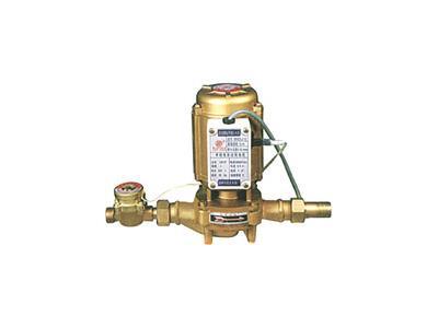 15G立式自動增壓泵(15G0.8-5)