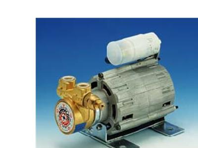 意大利咖啡機水泵RPM電機(RPM)