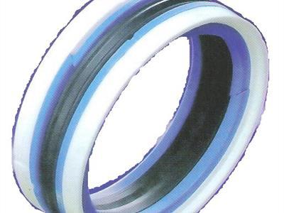 全系列的液壓密封件(IDI ODI UPH DAS )